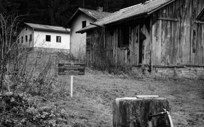 Kozila Forest Estate, Drnić