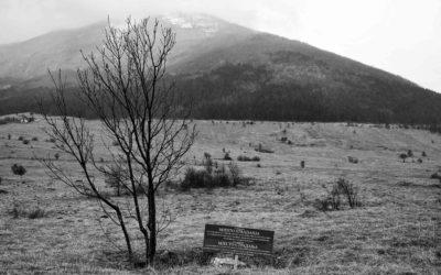 Jama Doline-Kušići, selo Zijemlje